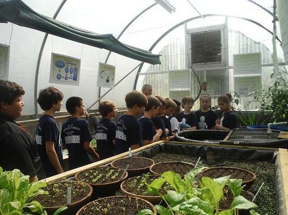 Mitchell Intermediate School students take turns feeding the fish in the closed-system aquaponics garden at the Texas AgriLife Extension office.
