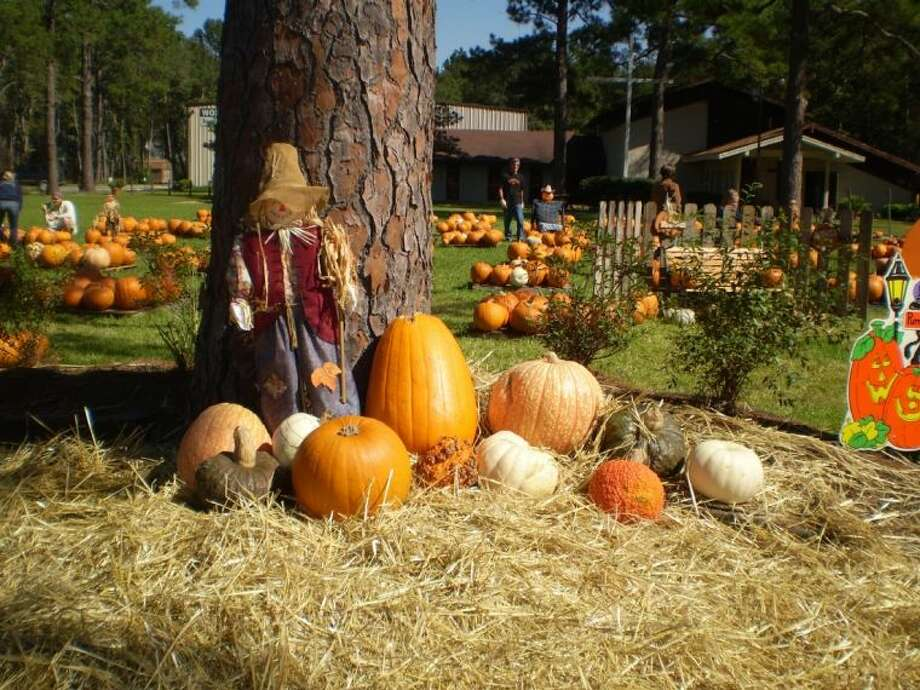 The Pumpkin Patch at Lake Houston United Methodist Church in Huffman.