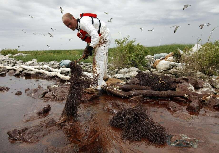In this June 4, 2010 file photo, a worker picks up blobs of oil with absorbent snare on Queen Bess Island at the mouth of Barataria Bay near the Gulf of Mexico in Plaquemines Parish, La. Photo: Gerald Herbert