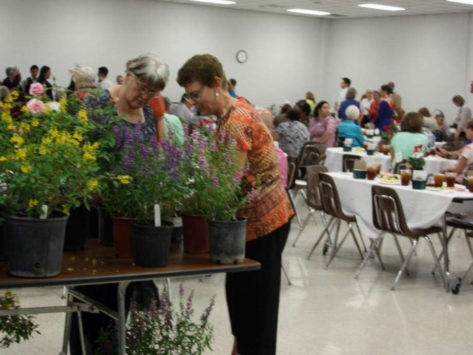 Keep Pearland Beautiful is hosting a plant sale and luncheon at Pearland First United Methodist Church. Photo: KRISTI NIX