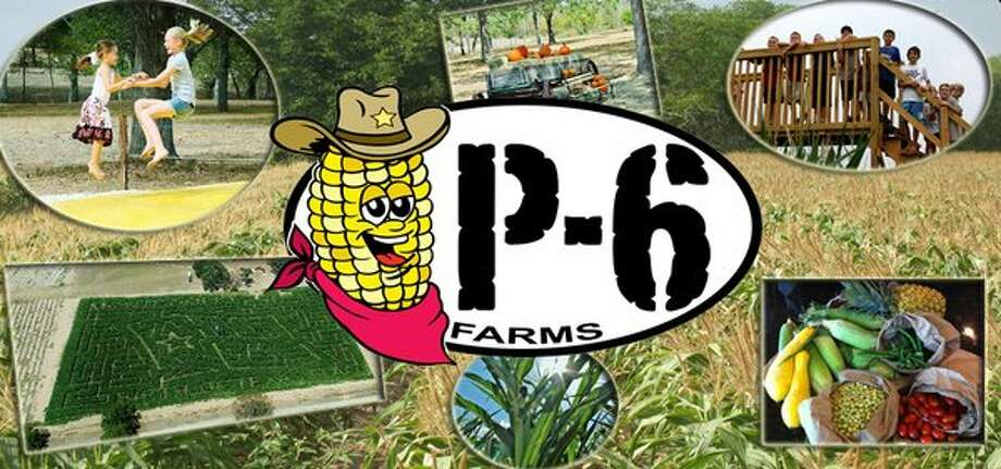 Image result for p-6 farms