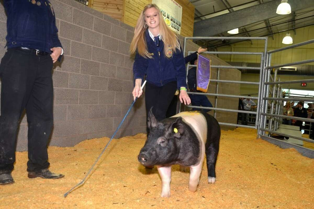 Cypress Woods High School student Lauren Lowry won the Grand Champion Swine, which sold for $11,500 to the Hayslip family.