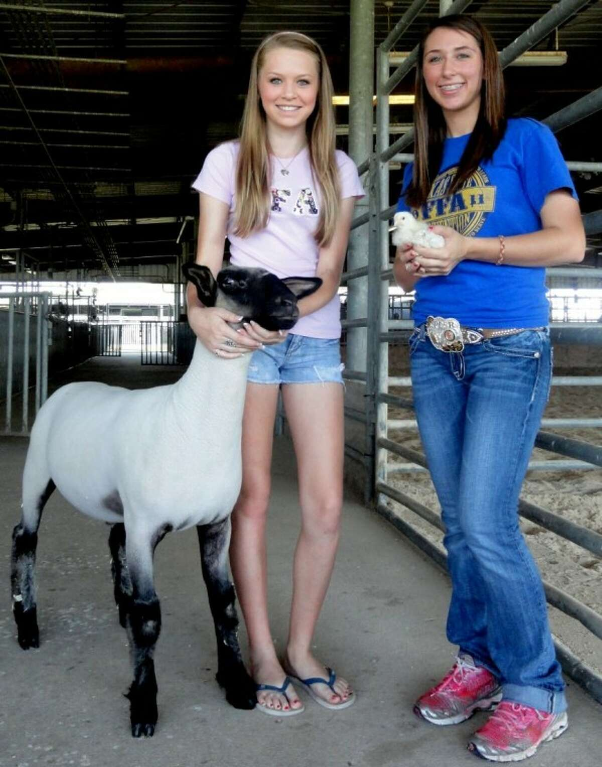 Left: Pasadena Memorial Sophomore Lauren Savage and Katie Burt (right) are preparing to show their animals at the 2012 Pasadena Livestock Show and Rodeo.