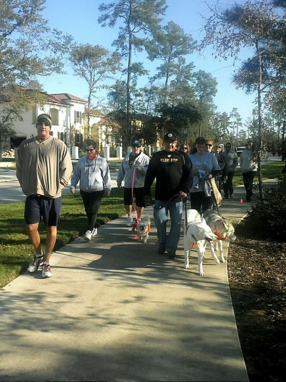 Lori Gaskill (walking dog with pink leash) and particpants at a MS Walk.