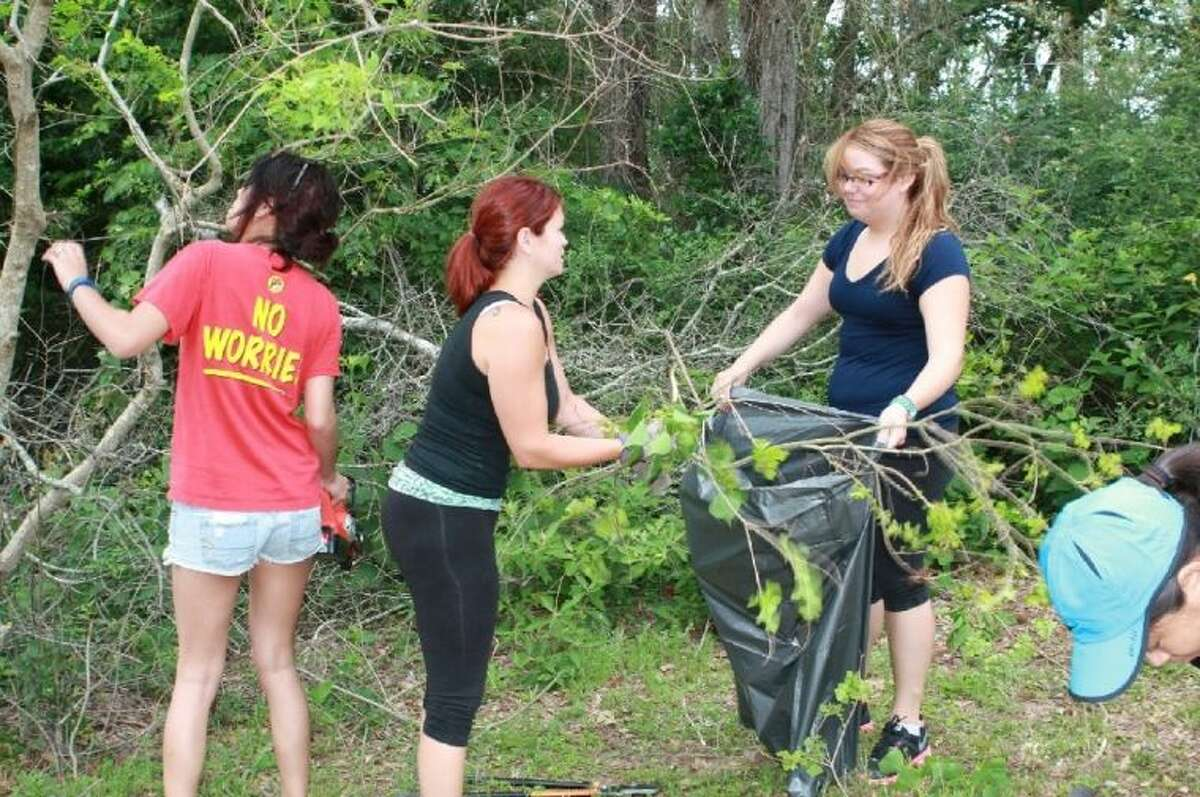 LSC-Tomball students participating in service-learning clean-up of wetland area adjacent to the campus.
