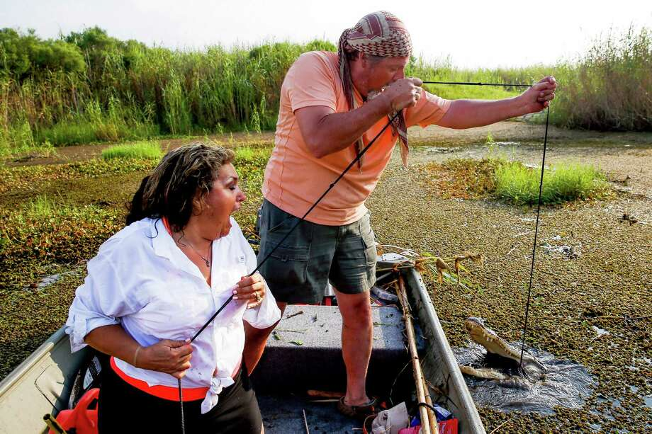 Nancy, Mike and the gator. (For more photos, scroll through the slideshow.) Photo: Michael Ciaglo, Houston Chronicle / © 2016  Houston Chronicle