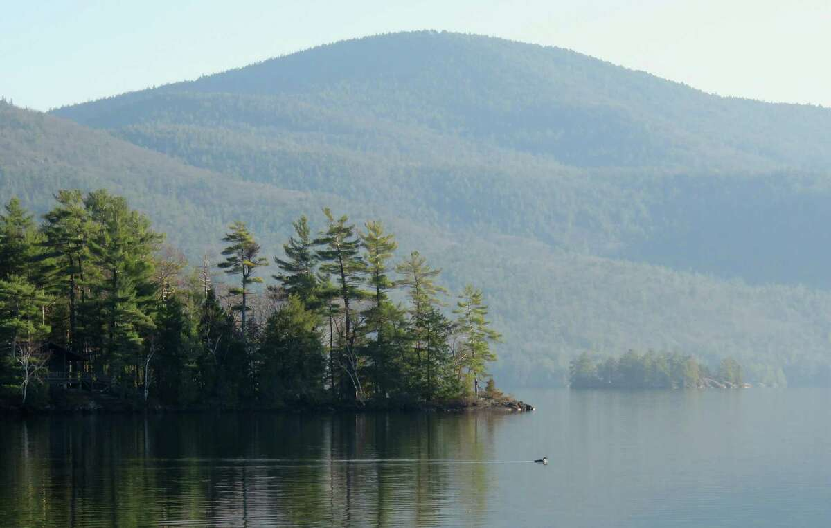A loon cruises from fish near Montcalm Point on Lake George with Buck Mountain behind. Photo by Herb Terns