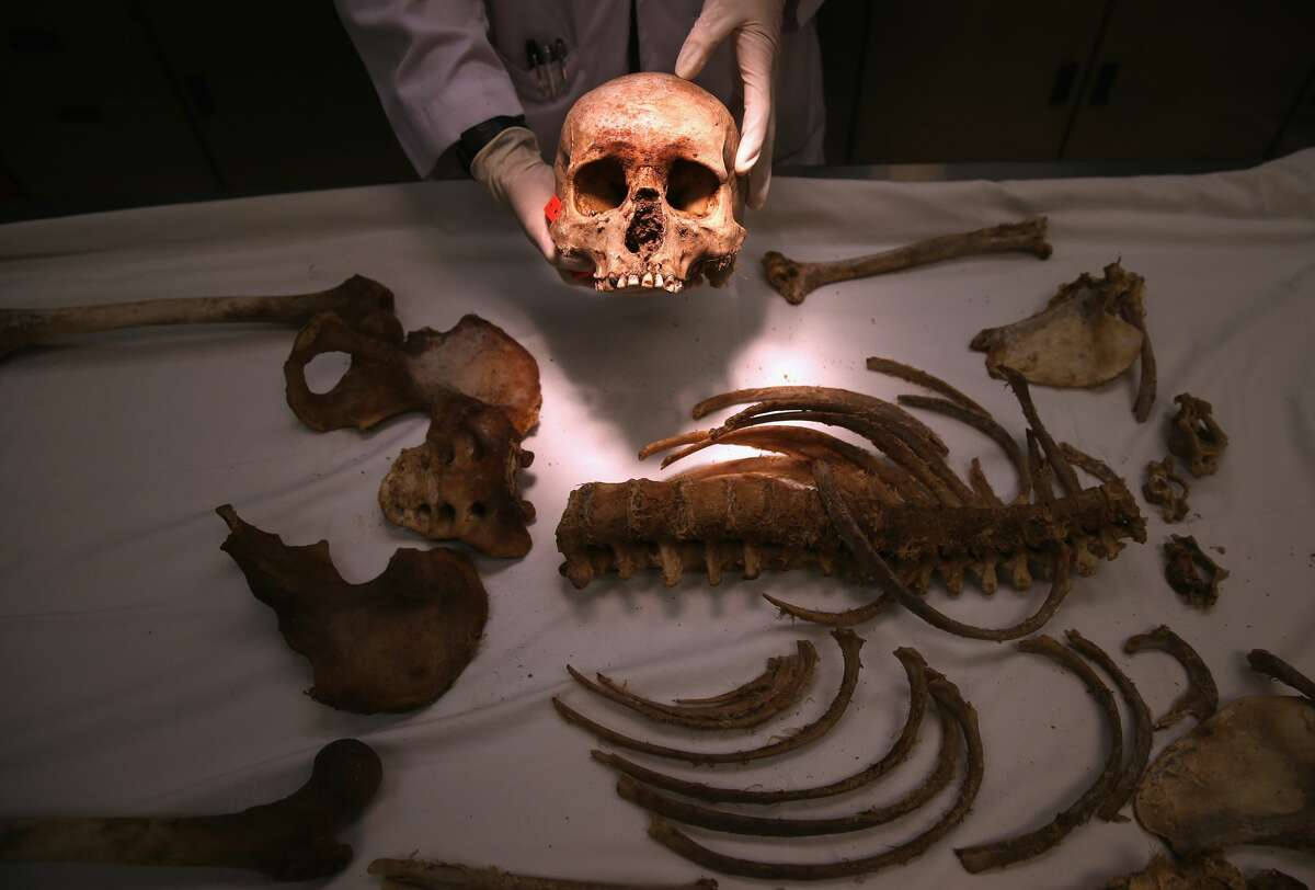 Forensic anthropologist Tracy Van Deest takes an inventory of skeletal bones at the Pima County Office of the Medical Examiner on December 9, 2014 in Tucson, Arizona. Forensic anthropologists attempt to identify the deceased, most of whom are undocumented immigrants found in the Arizona desert.