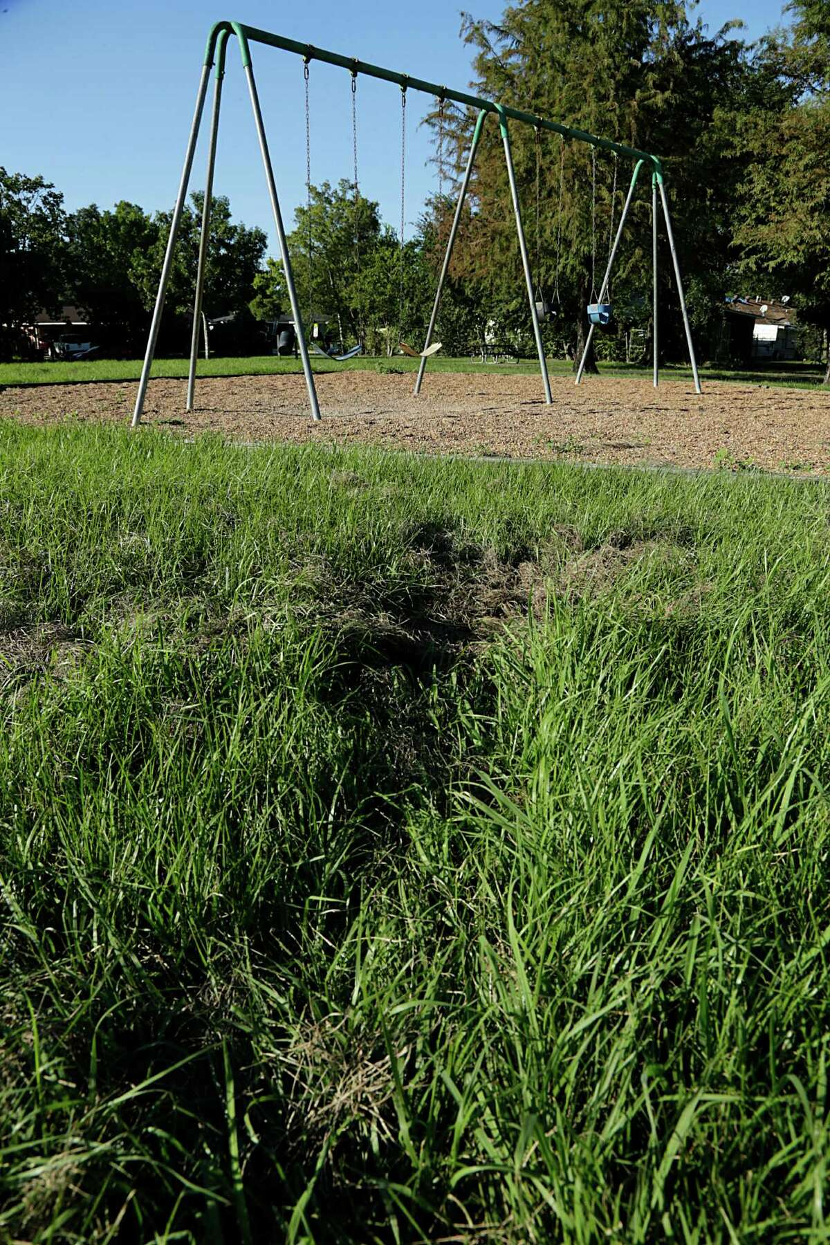 Tracks in the high grass surrounding a swing set at Oak Meadow Park Sept. 29, 2016, in Houston. ( James Nielsen / Houston Chronicle )