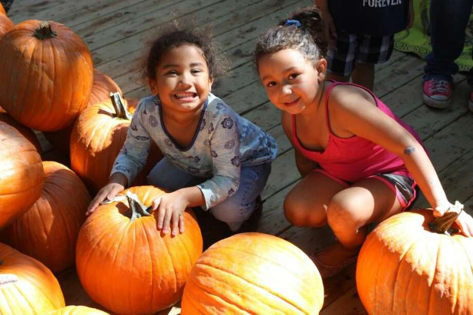 Four-year-old Jaelyn Dosia (left) and 5-year old Faith Viands (right) happily pick out the perfect pumpkin to decorate.