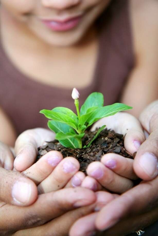 Growing a patio or balcony garden not only saves space and money but is also a simple way to teach children about nature and the responsibilities of tending to it.