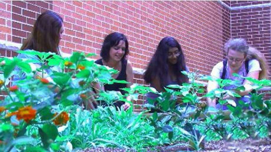 Krimmel Intermediate's environmental club students gear up to plant trees on Saturday, Nov. 17.