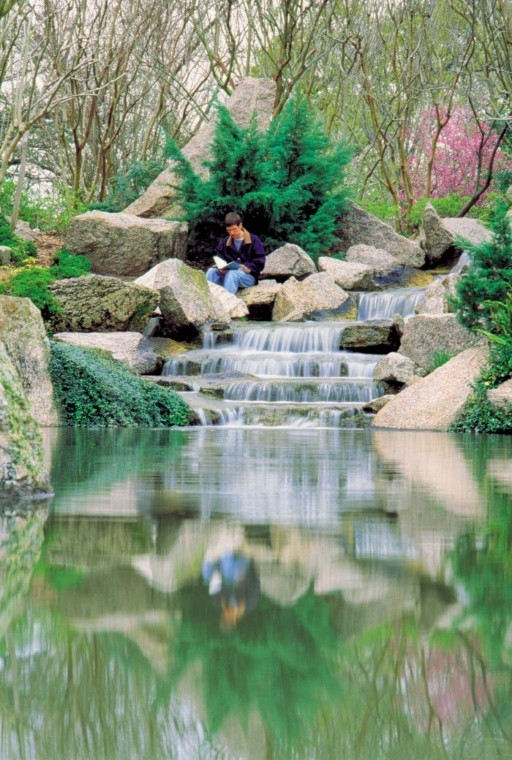 Hermann Park Japanese Garden Day June 19 Houston Chronicle