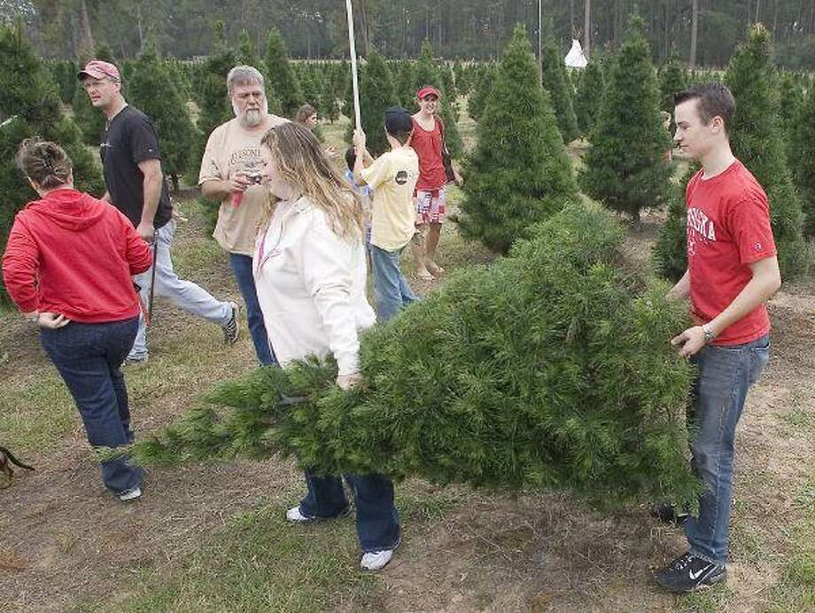 Where to cut your own Christmas tree in the Houston area - Houston ...
