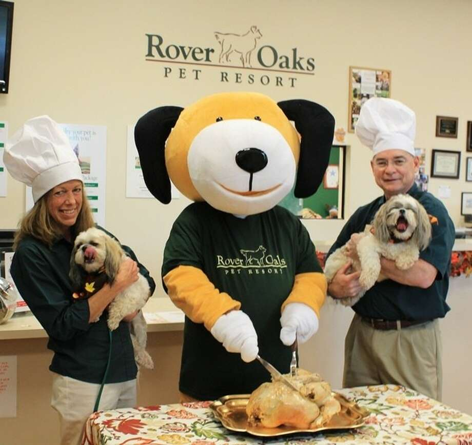 Rover Oaks delivers Thanksgiving turkeys for homeless animals staying at CAP. Photo: Submitted