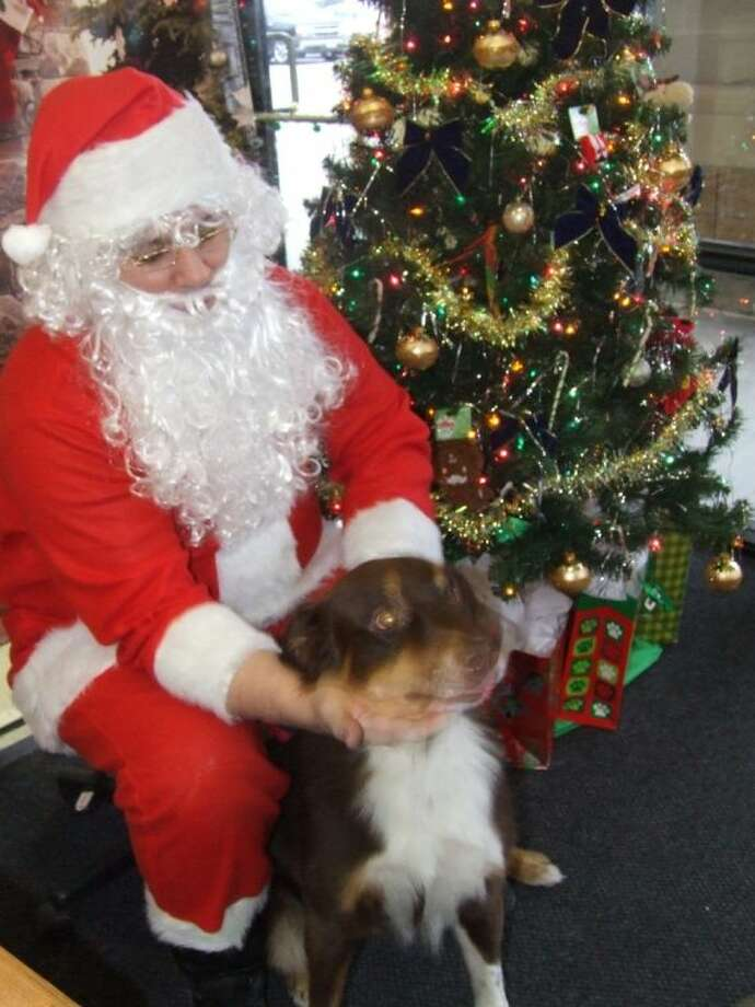 Perry Gisclair (Santa) pets 4-year old Granger at the photo with Santa event at the Petco located at 22511 State Highway 249 in Houston on Saturday Dec. 7