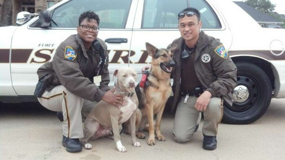 Fort Bend County Sheriff's Office Deputies Tamica Humphrey, left, and David Connolly are shown with the dogs they found and returned safely to their owner. Photo: Courtesy FBCSO