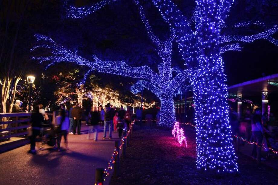 Spectators walk through glowing oak trees sparkling with thousands of colorful LED lights at the TXU Energy Zoo Lights with more than 1 million lights at the Houston Zoo in Houston, Texas on Thursday, Decemeber 26, 2013. TXU Energy Presents Zoo Lights will be open to the public through Saturday, January 4. Photo: Photo By Alan Warren