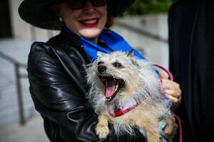 Cricket Jones stands with her dog Tigger, before entering church services at Grace Cathedral, in San Francisco, California, on Sunday, Oct. 2, 2016.