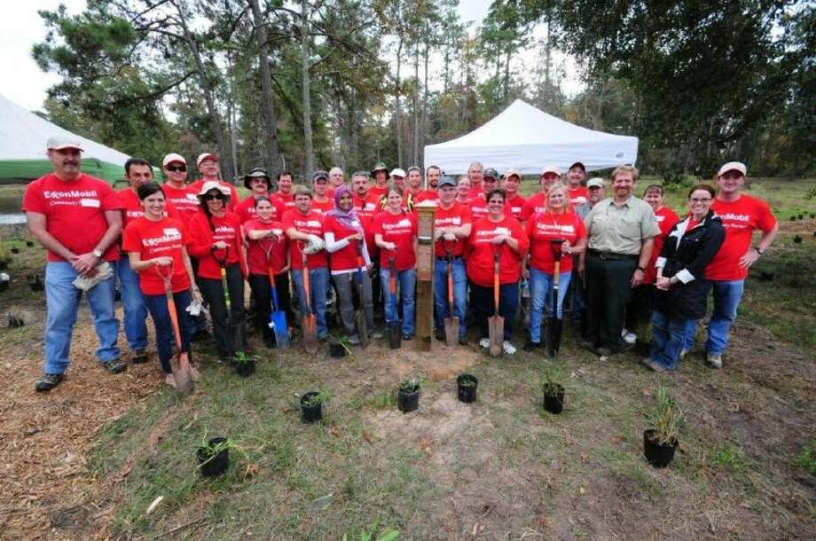 On a warm November day, nearly 38 volunteers from ExxonMobil Development Geoscience Division, Texas A&M Forest Service, Texas Master Gardener and Texas Master Naturalist met at the William Goodrich Jones State Forest. Photo: Submitted