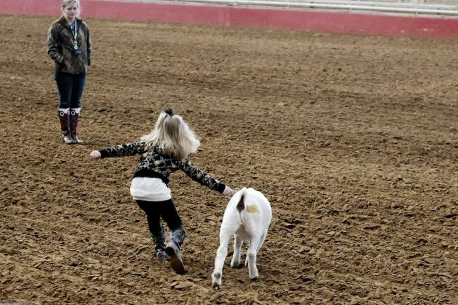 Forty-pound girl vs. 81-pound goat: Paisley Brown struggles with Soda Pop at the TVE arena Saturday, Jan. 4, during an AgriLife class on raising animals for show. Photo: CASEY STINNETT