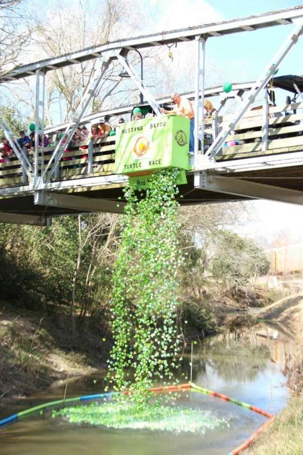 The day of the Turtle Race the adopted turtles will be taken to Mustang Bayou and gently dropped in from the walkway bridge along the Tom Blakeney Hike and Bike Trail. Photo: Courtesy Alvin ISD