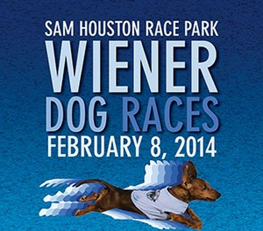 Sam Houston Race Park welcomes back Houston's fastest Wiener Dogs for a fun-filled and family-friendly evening of live racing with the seventh Annual Wiener Dog Races Saturday, Feb. 8.