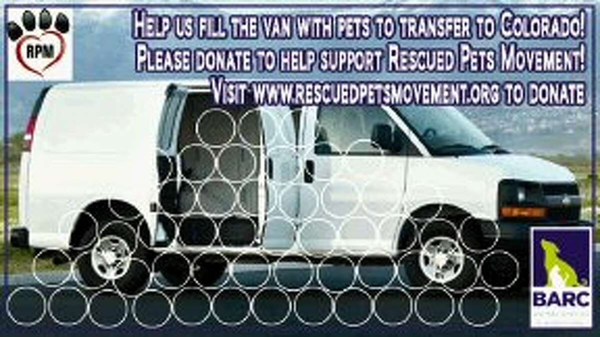 BARC and Rescued Pets Movement are working to