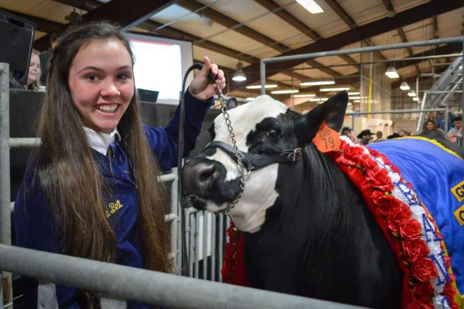 Clear Lake High School freshman Kara Belt with her Grand Champion Steer which sold for a record $21,000. Photo: CCISD Office Of Communications