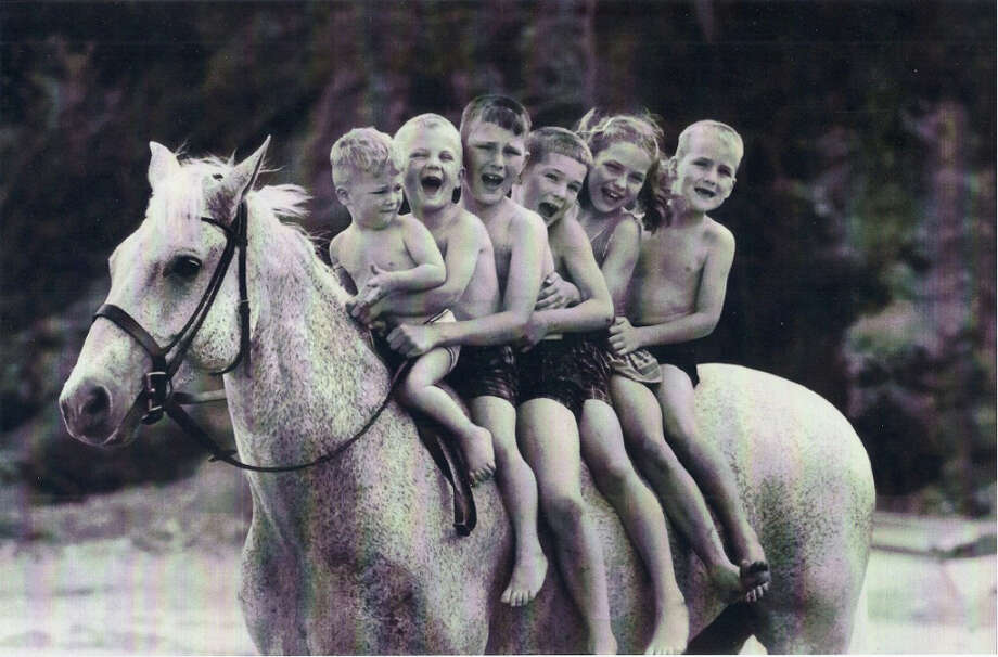 """The Hearst movie club will meet at the Palace Theatre in Danbury for a screening of the new documentary about a horse rescued from a slaughterhouse — """"Harry & Snowman"""" — on Friday, Oct. 7. Photo: Contributed Photo / Connecticut Post Contributed"""