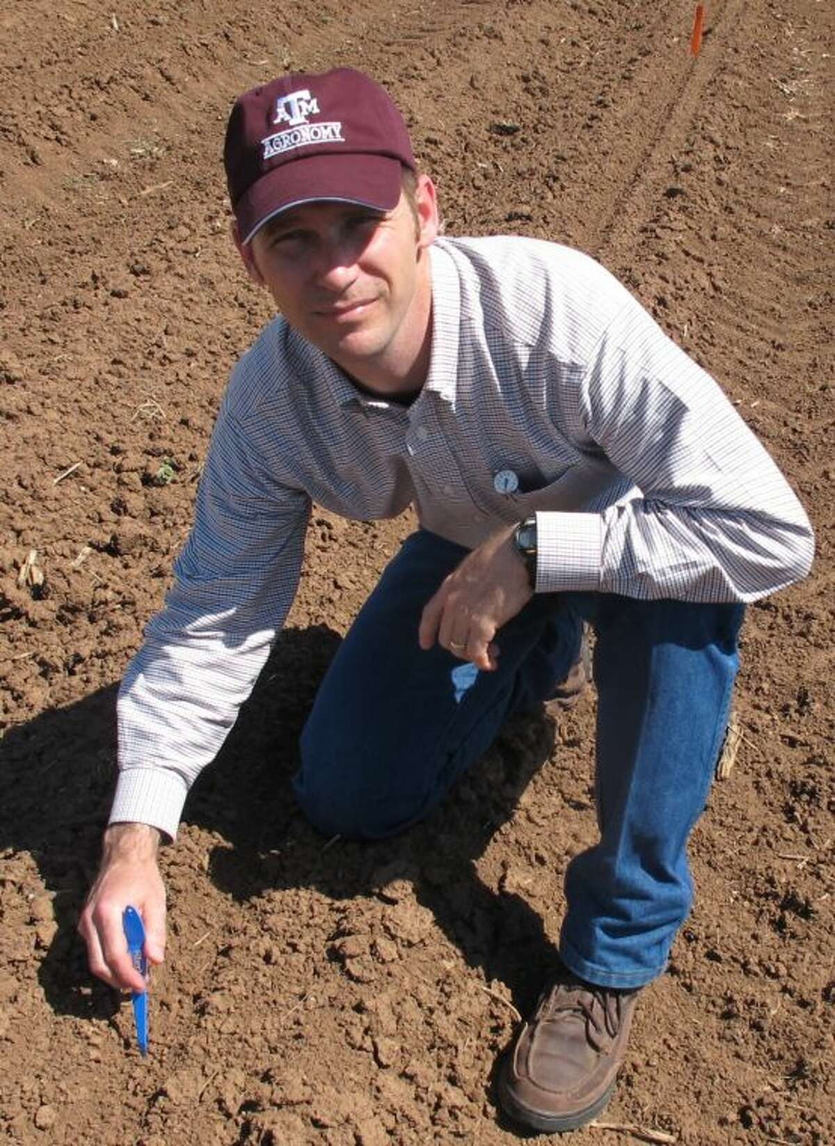 Dr. Gaylon Morgan is the Texas A&M AgriLife Extension service statewide cotton specialist, College Station.