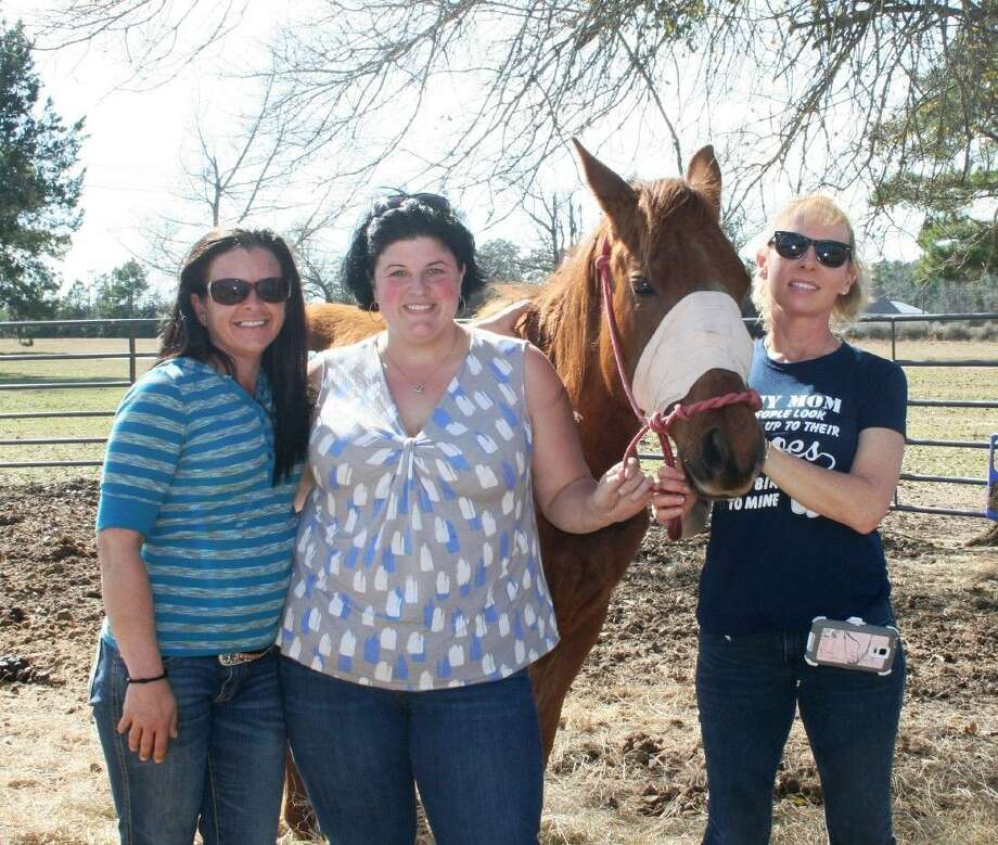 Horse lovers Connie Lashmet, Amy Whitaker and Stacy Pipkin have been working together for months to rehabilitate abused and neglected horses. Photo: Stephanie Buckner