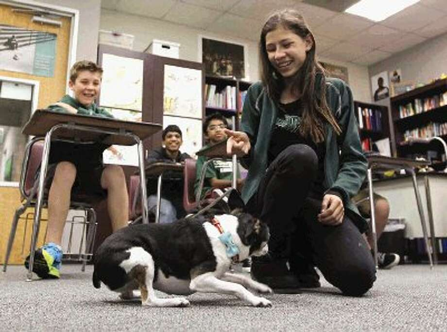 Students at The John Cooper School had the opportunity to try tricks with Bo. Dog owner Rebecca Smith uses Bo to help break the ice with new patients with her private practice counseling center during a Career Day at The John Cooper School Friday. Photo: Jason Fochtman