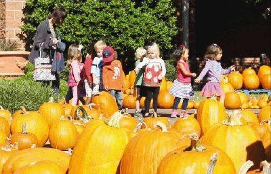 Children walk through a pumpkin patch in the courtyard at Christ Church United Methodist in The Woodlands Thursday. The church's pumpkin patch is open every day from 9 a.m. to 7 p.m. Other local patch's include: First Christian Church Conroe opened starting Saturday, Oct. 18 from noon to 6 p.m., and 7 Acre Woods in Conroe open Tuesday through Saturday 9 a.m. to 5 p.m. and Sunday from noon to 5 p.m. Photo: Jason Fochtman