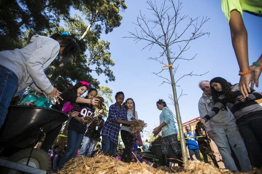 Students help spread mulch around the base of their new oak tree during an Arbor Day celebration Feb. 19, 2015, at Oak Forest Elementary School. Photo: ANDREW BUCKLEY