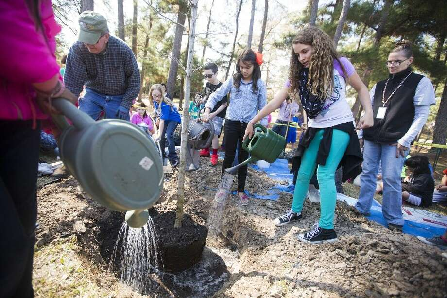 Kids water the soil before dirt is filled in during an Arbor Day celebration Feb. 19, 2015, at Oak Forest Elementary School. Photo: ANDREW BUCKLEY