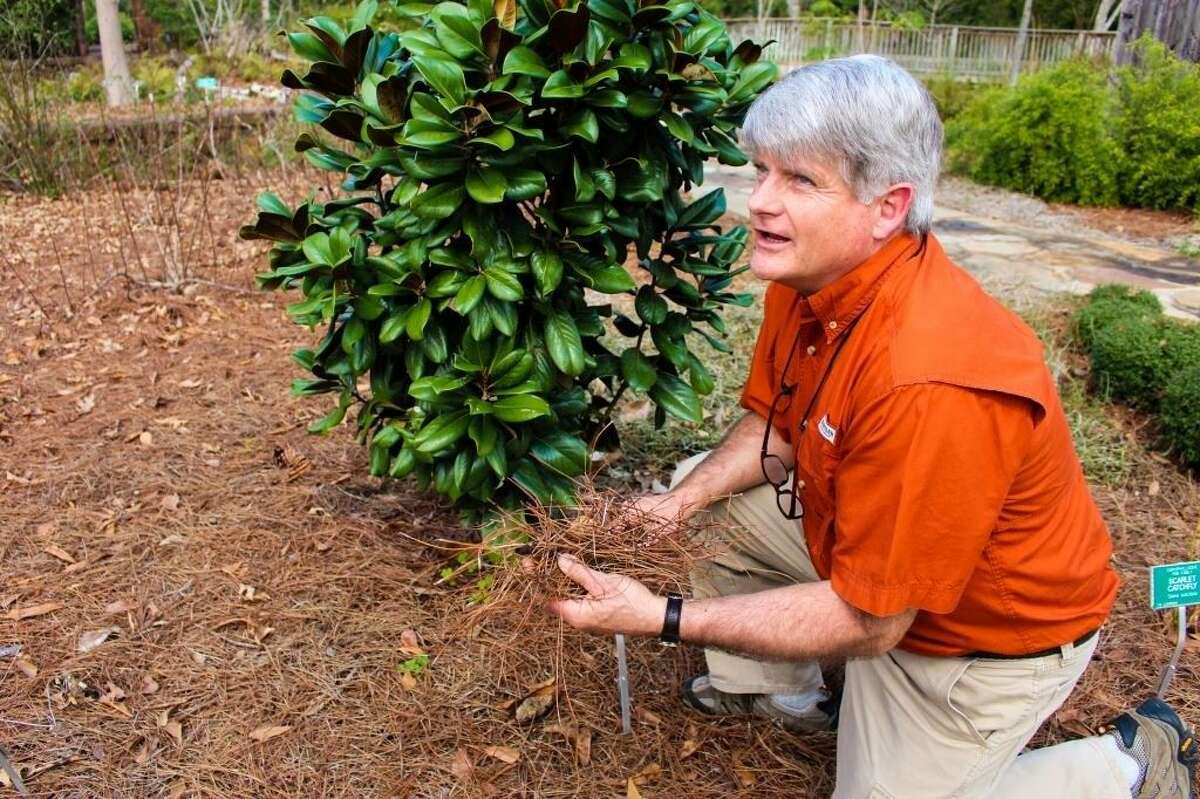 John Ross discussed the various benefits of gardening with native plants.