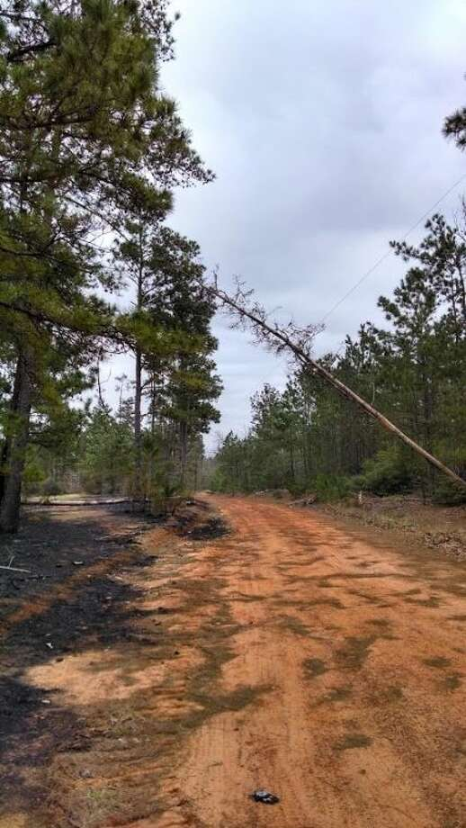 The Magnolia VFD recently responded to a fire on FM 1486 just south of Crown Ranch subdivision where a dead tree fell onto an electric line, snapping the line and starting the fire in the dry brush. Photo: Magnolia VFD