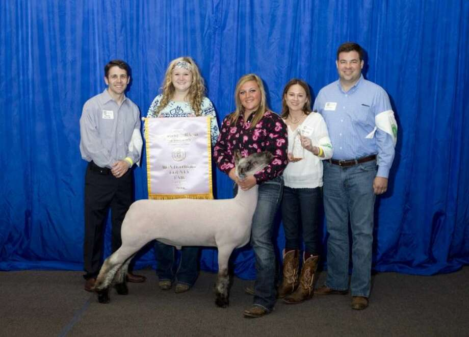 Madison Wiggins' Lamb was named the Reserve Champion during the Junior Livestock Show at the Montgomery County Fair and Rodeo Wednesday. The Splendora FFA member's steer was sold for $6,000. Approximately 1,000 exhibitors showed animals, of which 140 were sold at auction. Photo: Jason Fochtman