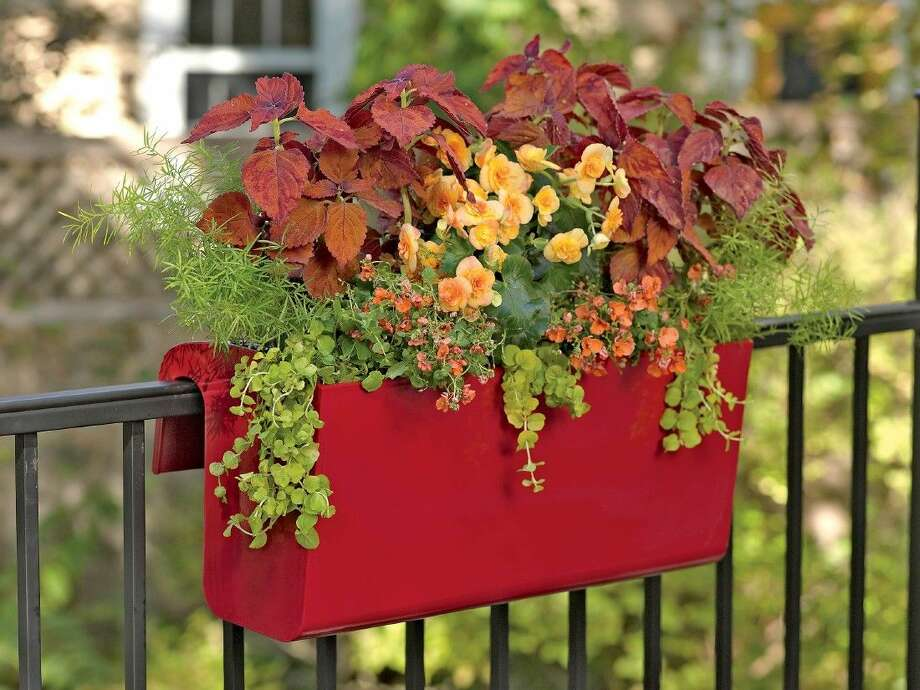 Railing planters filled with colorful combinations can add sparkle to balconies, decks and porches.