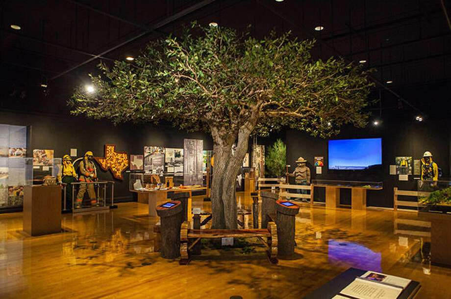Texas A&M Forest Service celebrates centennial with new museum exhibit