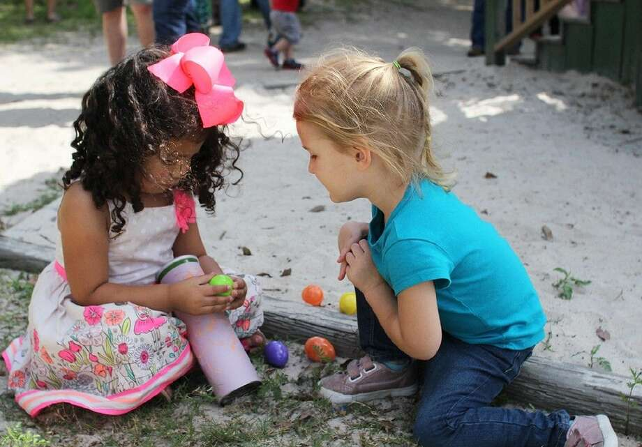 ACC Child Lab School students Aubrey Pena, 3, and Shelby Morrison, 3, both of Alvin, go over their eggs during an egg hunt on April 2.