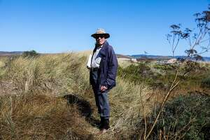 Historian and President of the Drake Navigators Guild, Edward Von Der Porten stands in tall grass at Drake's cove while giving a tour of the area, in Inverness, California, on Tuesday, September 27, 2016.