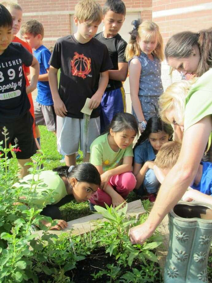 Stephanie Baker of Ready to Grow Gardens, right foreground, gives a planting lesson to Sampson Elementary School third grade students (clockwise from top left) Adam Ryu, Tyler Colwell, Cole Howard, Sawyer Despres, Sam Myers, Audrey Schmid, Uma Sivakumar, Victoria Zhang and Inia Narayanan. Photo: Submitted Photo
