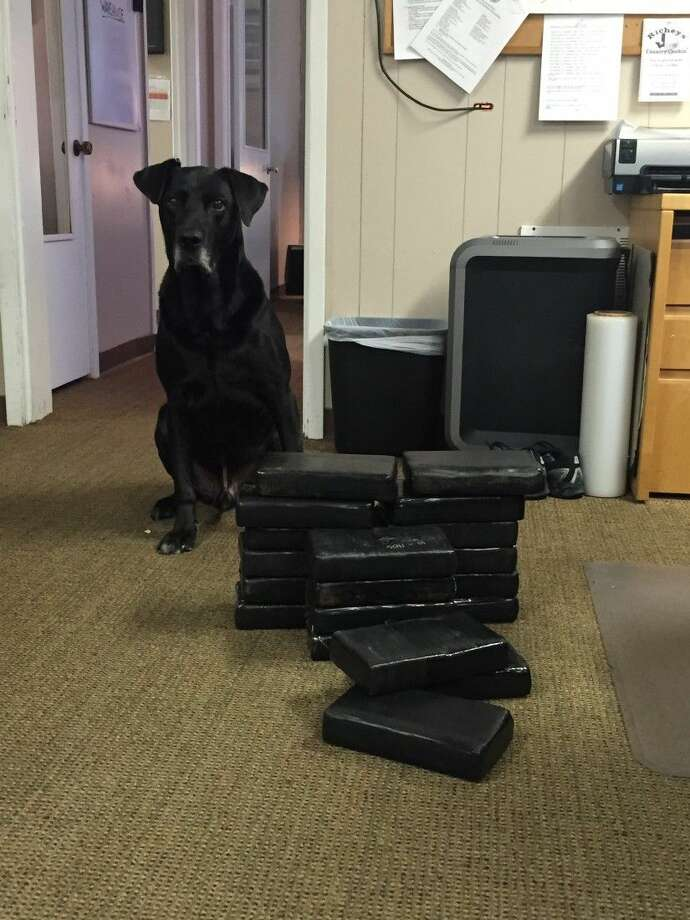 When Pasadena officers arrested the suspect for traffic infractions, inconsistencies with his destination and travel plans led to a narcotics K-9 deployment on the vehicle.