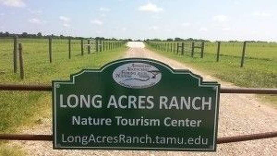 Long Acres Ranch Nature Tourism Center will have youth and adult recreational activities, plus research and specialized training opportunities. (Texas A&M AgriLife Extension Service photo by Miles Phillips).