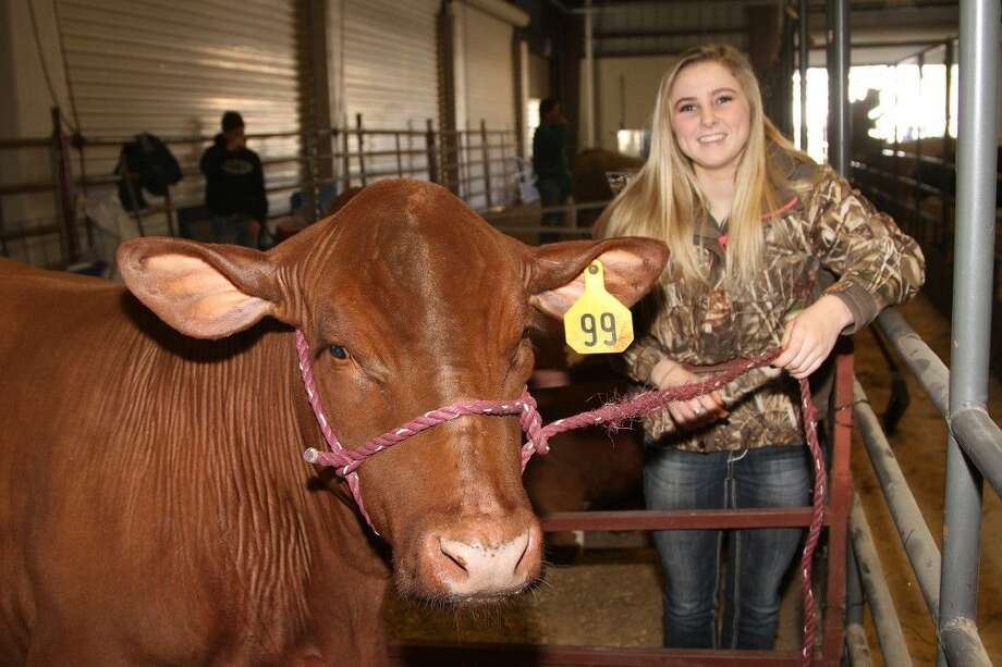 Tomball Memorial High School sophomore Kaitlin Smith showed her steer, Mater, at Tomball ISD's 40th Annual FFA Project Show. Smith also raised a goat. She explained raising animals helped improve her organizational skills when preparing for the show. Photo: Submitted