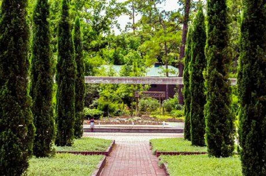 Mediterranean garden plantings such as Italian cypress trees line the existing Cypress Promenade in the Renaissance Garden.