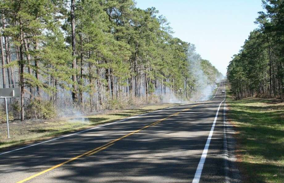 Smoke fills the Sam Houston National Forest south of Coldspring on FM 2025. A prescribed burn is under way to remove fuel from the ground that could lead to a forest fire. Photo: Vanesa Brashier
