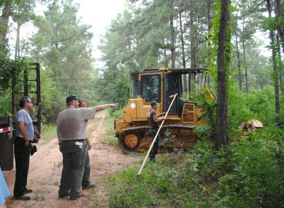 Urban District Forester John Warner shows his team of foresters where to push down certain foliage to prepare the Jones State Forest to be the home of some Red-Cockaded woodpeckers, helping to provide new breeding genetic diversity on the state forest.